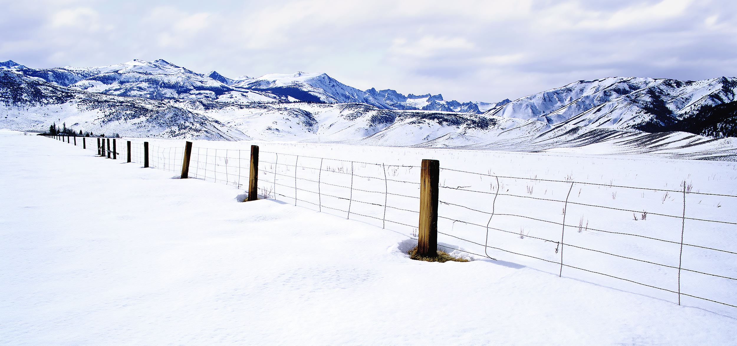 Ranch fence in Snowscape in Bridgeport, California