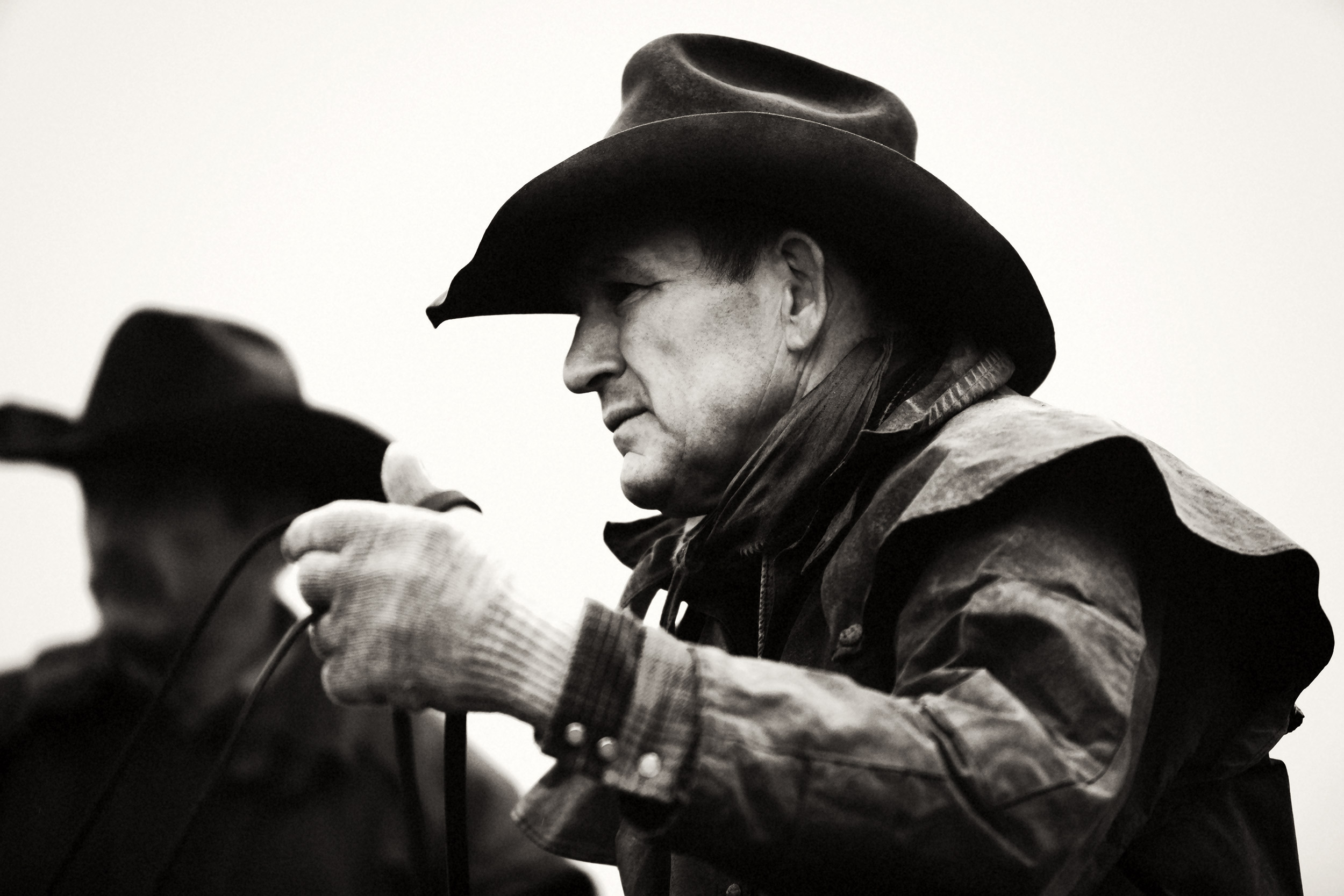 Cowboy holding the reins while sitting on his horse at the Bucking Horse Sale in Montana