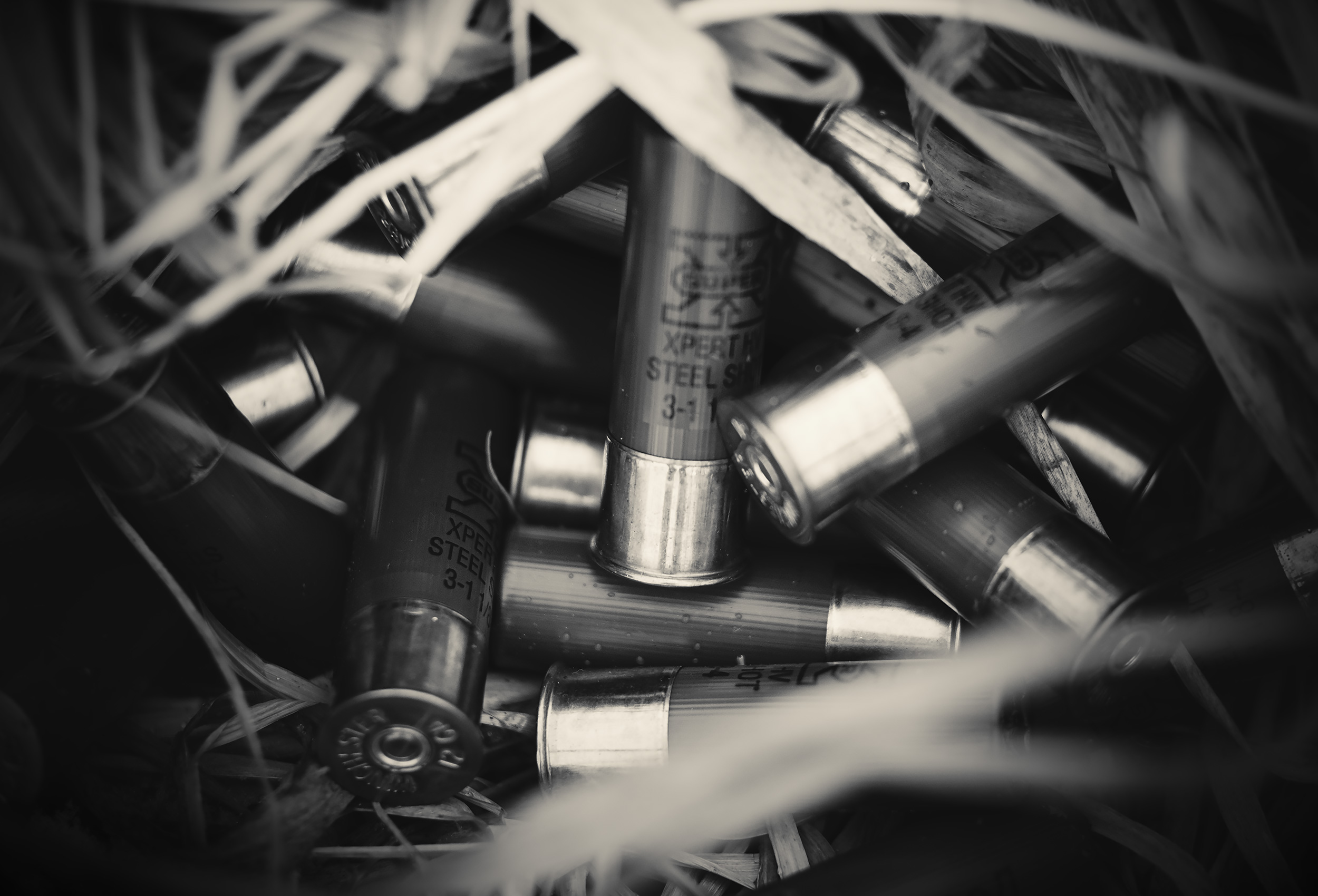 A pile of shotgun shells in a duck blind