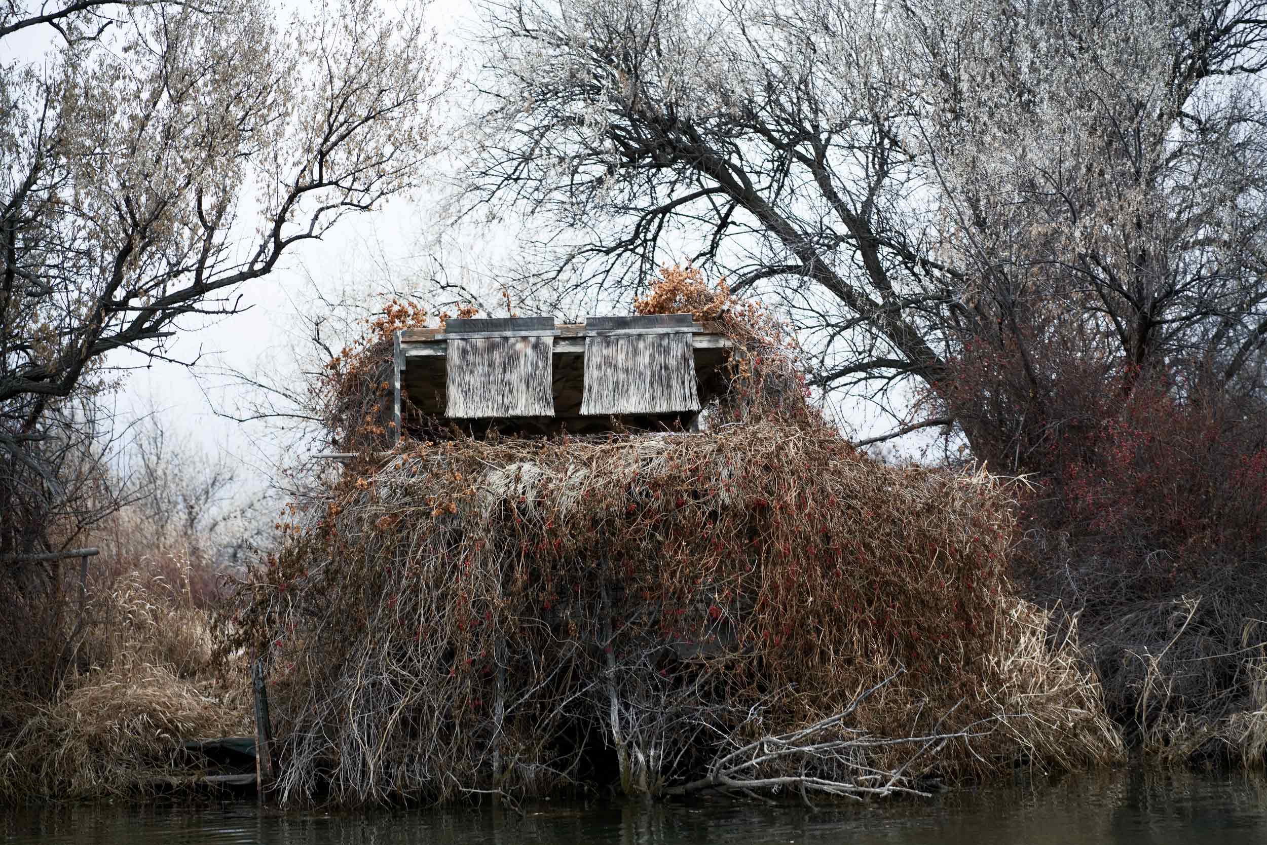 Duck Blind on the Big Horn