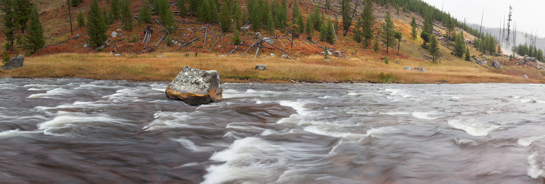 The Gibbon River, Yellowstone National Park