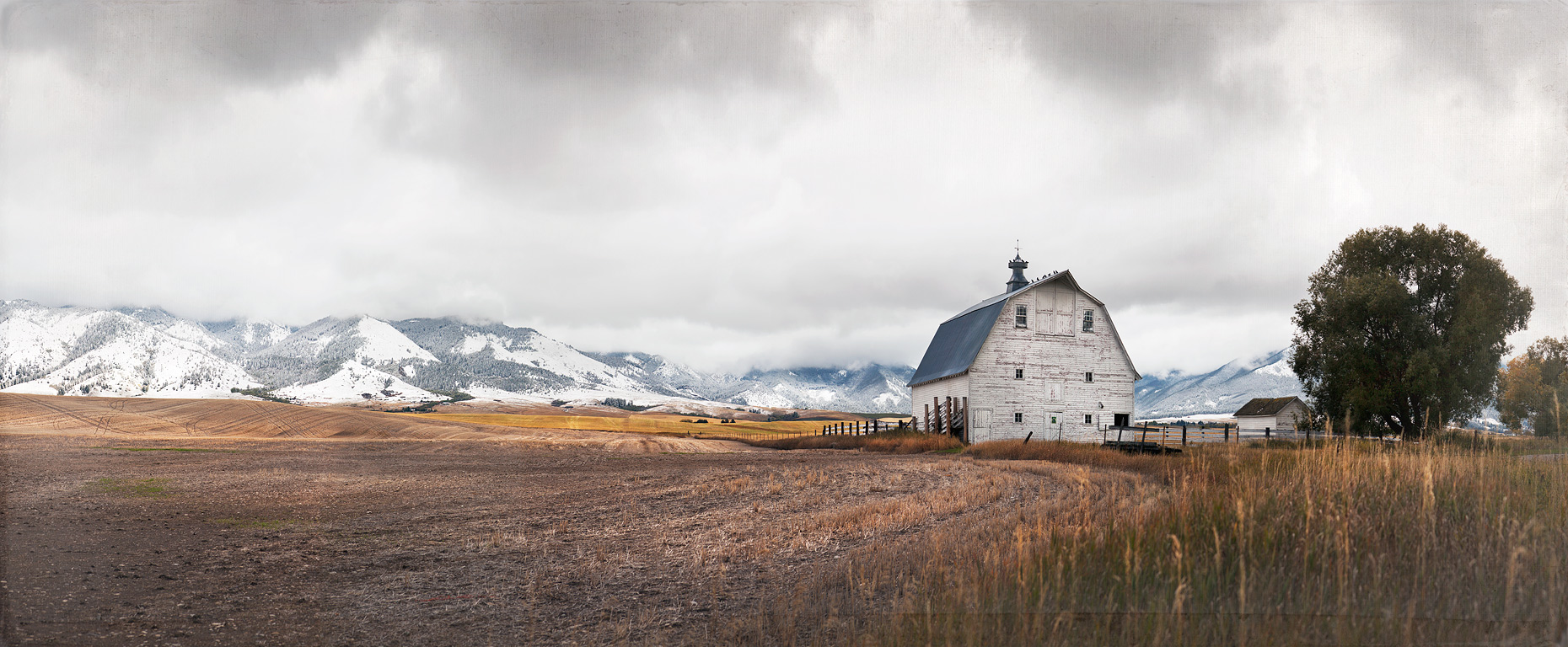 A Gallatin Valley Barn